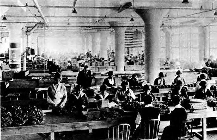 Black and white photo of internal factory with rows of women sitting at tables in a gas mask plant