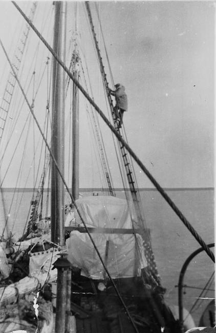 A group of sailors standing at top of rigging with flag on top, waving from precarious heights
